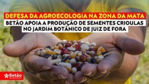 Betão soma esforços ao trabalho desenvolvido pelo Jardim Botânico de Juiz de Fora na conservação e pesquisa de sementes crioulas na Zona da Mata